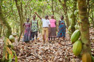 Olam International reports steady performance despite market challenges