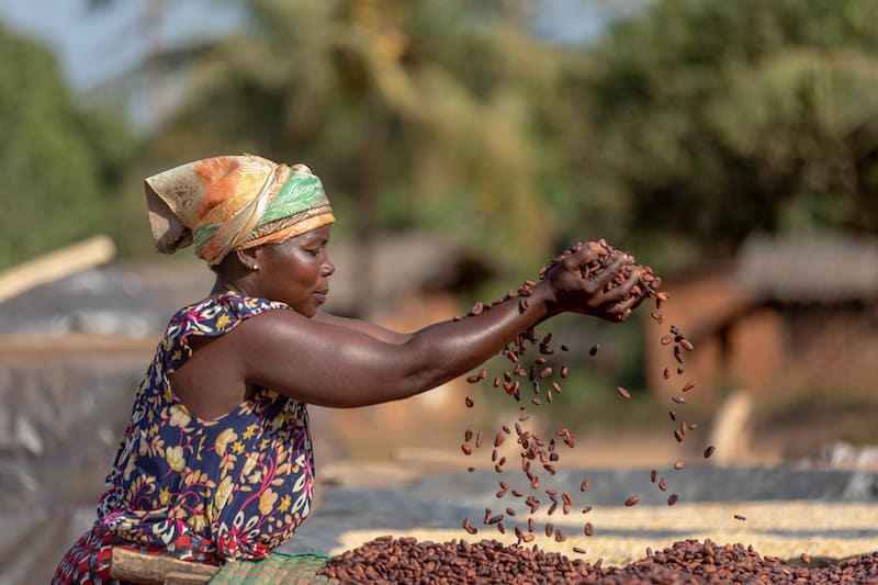 Cargill releases Decade of Impact report with global charity CARE on cocoa sustainability