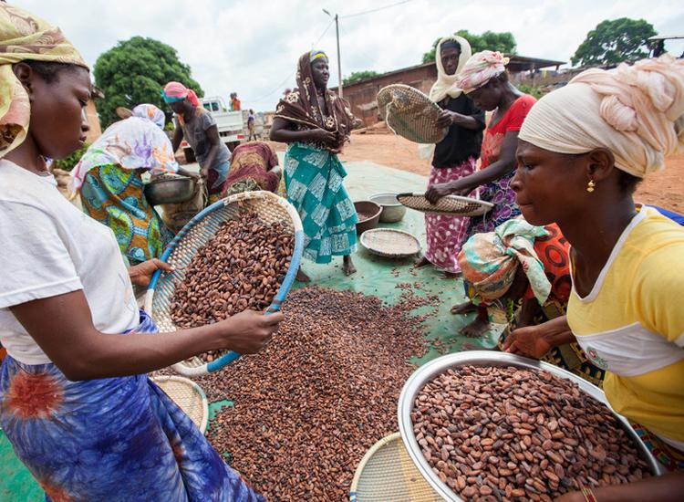 Fairtrade delivers multi-million coronavirus relief funding to cocoa and farming communities