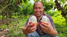 Market focus: Twenty Degrees cacao interview