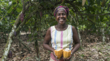 Fairtrade studies reveal its work offers vital boost for Ivory Coast farmers
