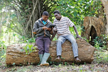 Rainforest Alliance names winners of global scheme to assist cocoa farmers