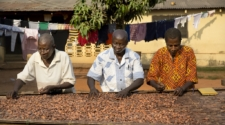 Tony's Chocolonely set for UK tour raising awareness of cocoa sector inequality