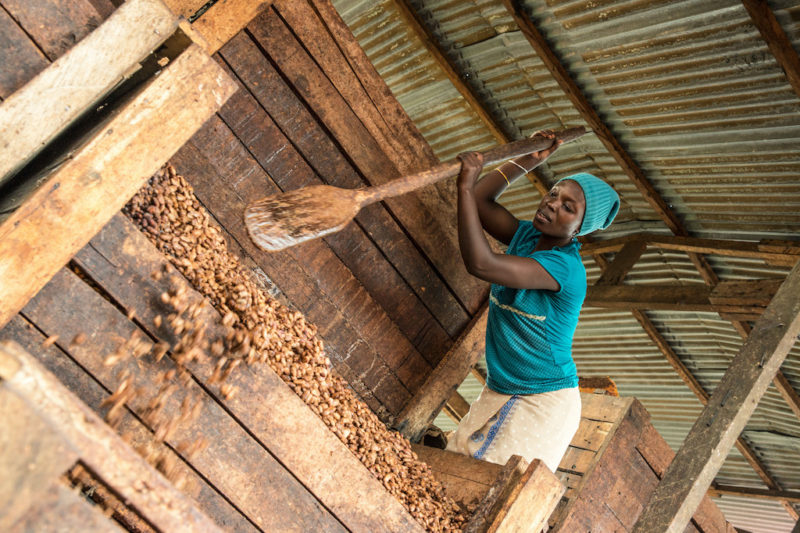 Fairtrade progress on farmer payment offers hope amid ongoing challenges