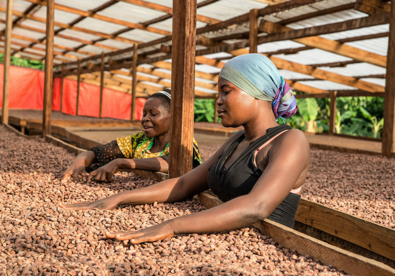 Fairtrade interview: World Confectionery Conference preview