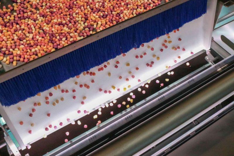 Key Technology unveils latest digital sorter for gummy confectionery