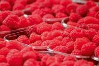 raspberries-378259_1280